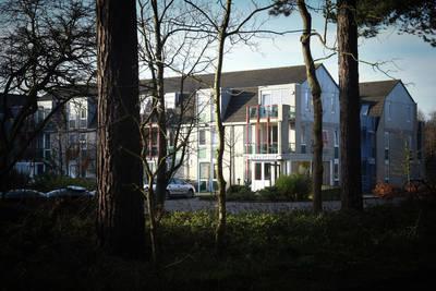 Residentie Californië in DE KOOG - Waddeneilanden, Nederland foto 10051