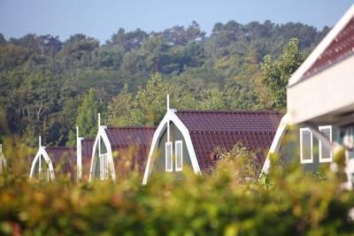 Résidence Koningshof in Schoorl - Noord-Holland, Nederland foto 10115