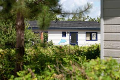 Kustpark Egmond aan Zee in Egmond aan Zee - Noord-Holland, Nederland foto 10161