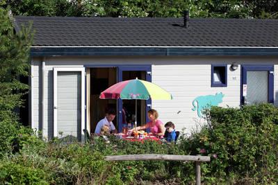 Kustpark Egmond aan Zee in Egmond aan Zee - Noord-Holland, Nederland foto 10174
