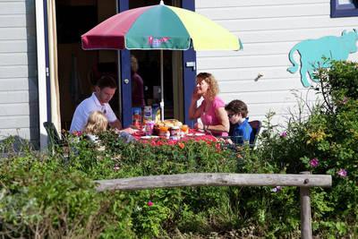 Kustpark Egmond aan Zee in Egmond aan Zee - Noord-Holland, Nederland foto 10175
