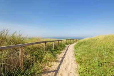 Kustpark Egmond aan Zee in Egmond aan Zee - Noord-Holland, Nederland foto 10190