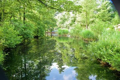 Vakantiepark de Berkenhorst in Kootwijk - Gelderland, Nederland foto 10625