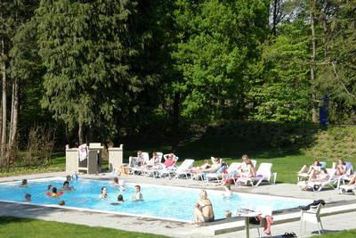 Bospark Garderen in Garderen - Gelderland, Nederland foto 10682