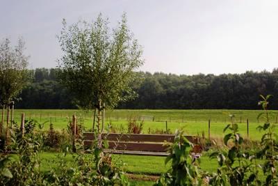 Recreatiepark de Stelhoeve in Wemeldinge - Zeeland, Nederland foto 10903