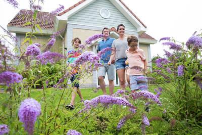 Noordzee Résidence De Banjaard in Kamperland - Zeeland, Nederland foto 10965