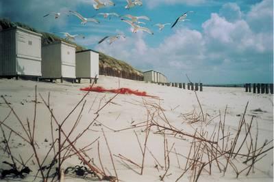 Noordzee Résidence De Banjaard in Kamperland - Zeeland, Nederland foto 10969