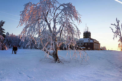 Ferienpark Winterberg in Winterberg - Sauerland, Duitsland foto 1105