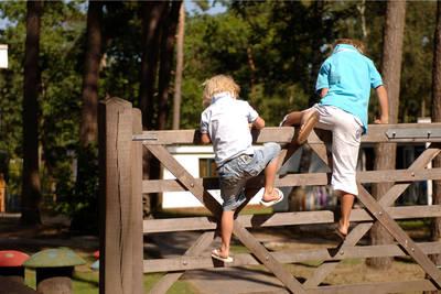 Bospark 't Wolfsven in Mierlo - Noord-Brabant, Nederland foto 11234