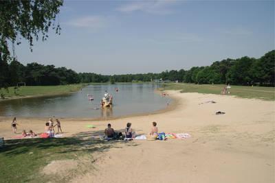 Bospark 't Wolfsven in Mierlo - Noord-Brabant, Nederland foto 11238