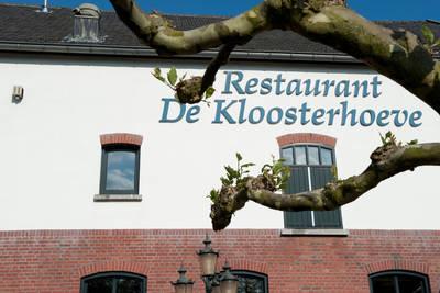 Klein Vink in Arcen - Limburg, Nederland foto 11340