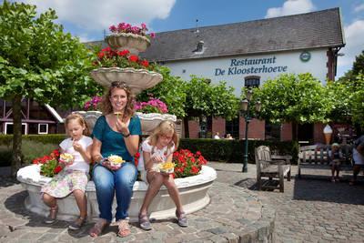 Klein Vink in Arcen - Limburg, Nederland foto 11349
