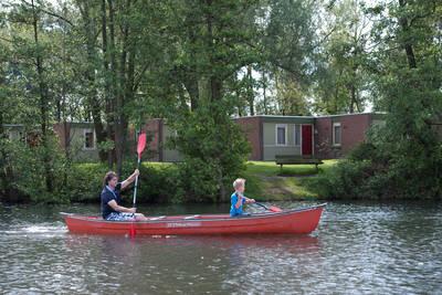 Klein Vink in Arcen - Limburg, Nederland foto 11358