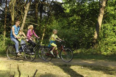 Vakantiepark Weerterbergen in Weert - Limburg, Nederland foto 11398