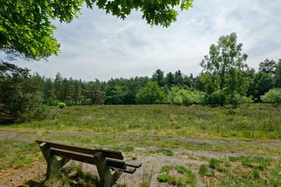 Finspark Herikerberg in Markelo - Overijssel, Nederland foto 11946