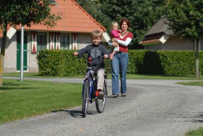 Landschapspark Striks Erve in Ijhorst - Overijssel, Nederland foto 12149