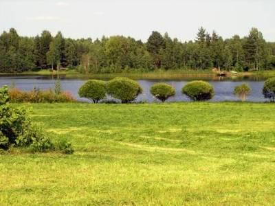 Petäjäniemi