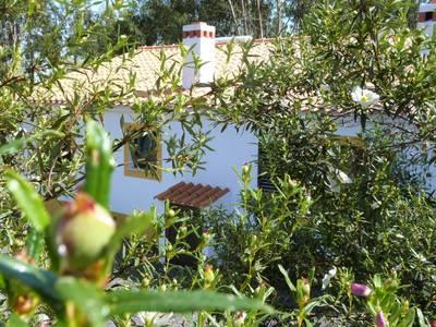 Natuurhuisje in Cercal do alentejo