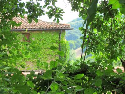 Natuurhuisje in Casola valsenio