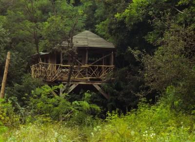 Natuurhuisje in Bodolyaber