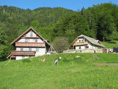 Tourist farm Pr' Vazniku