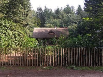 Natuurhuisje in Tynaarlo