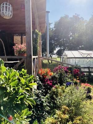 Natuurhuisje in Schermerhorn