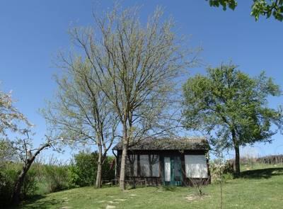Natuurhuisje in Nagykónyi