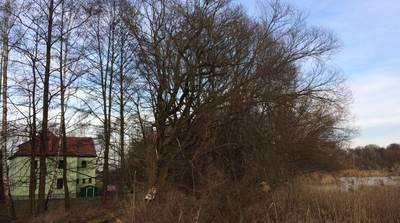 Natuurhuisje in Malschwitz o/t guttau