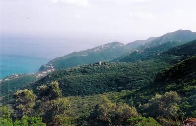 Natuurhuisje in Vale da rasca