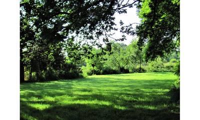 Natuurhuisje in Moormerland