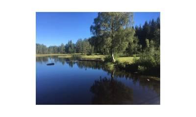 Natuurhuisje in Jädraås
