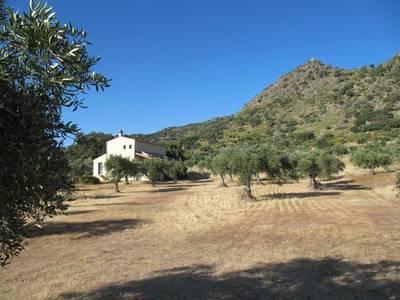 Natuurhuisje in Montánchez