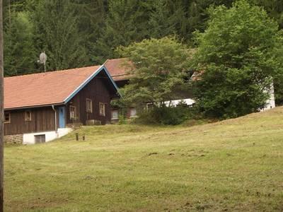 Natuurhuisje in Kollnburg