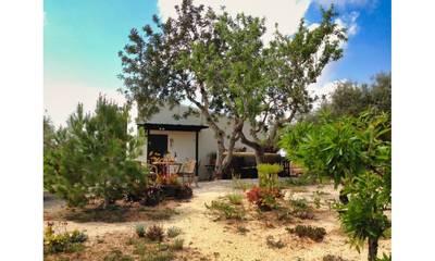 Natuurhuisje in Tortosa