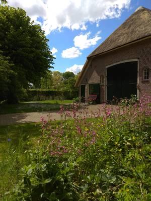 Natuurhuisje in Benneveld