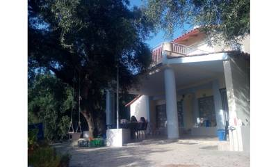 Natuurhuisje in Vrachos