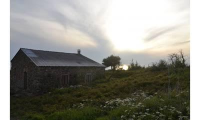 Natuurhuisje in Gizzeria