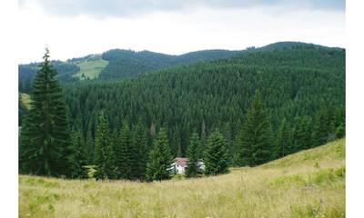Natuurhuisje in Ciumarna