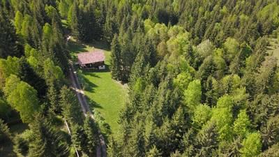 Natuurhuisje in Călățele-pădure