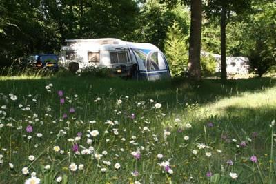 Camping Sites Et Paysages Au Bois Joli