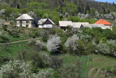 Natuurhuisje in Zvolen - kralova