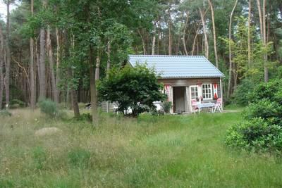 Natuurhuisje in Drunen