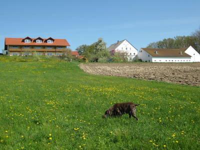 Natuurhuisje in Rotthalmünster
