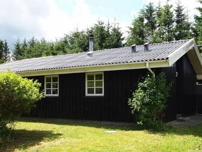 Natuurhuisje in Blokhus