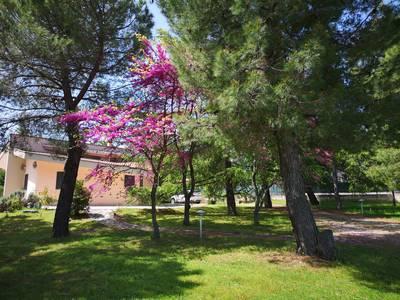 Natuurhuisje in Andria