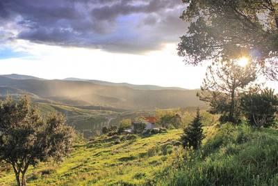 Natuurhuisje in Berzocana