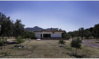 Natuurhuisje in Rhodes