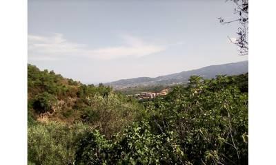 Natuurhuisje in Località murofontana