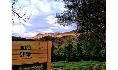Natuurhuisje in Posaga de jos
